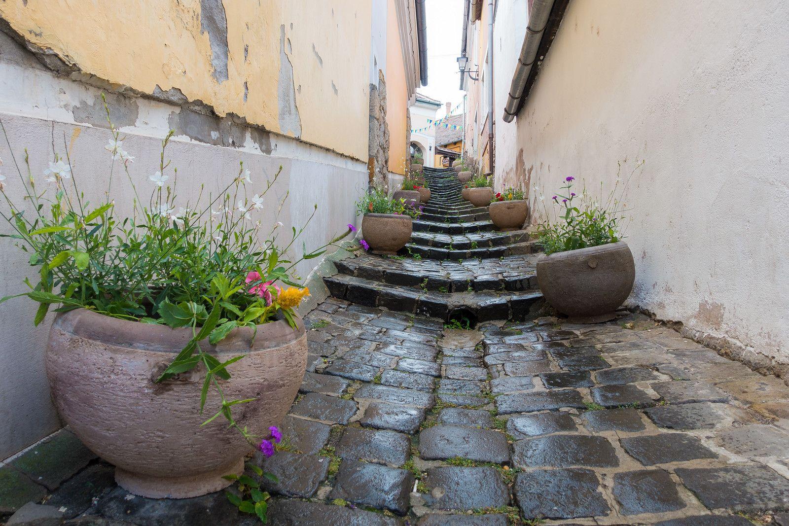 Szentendrei lépcső
