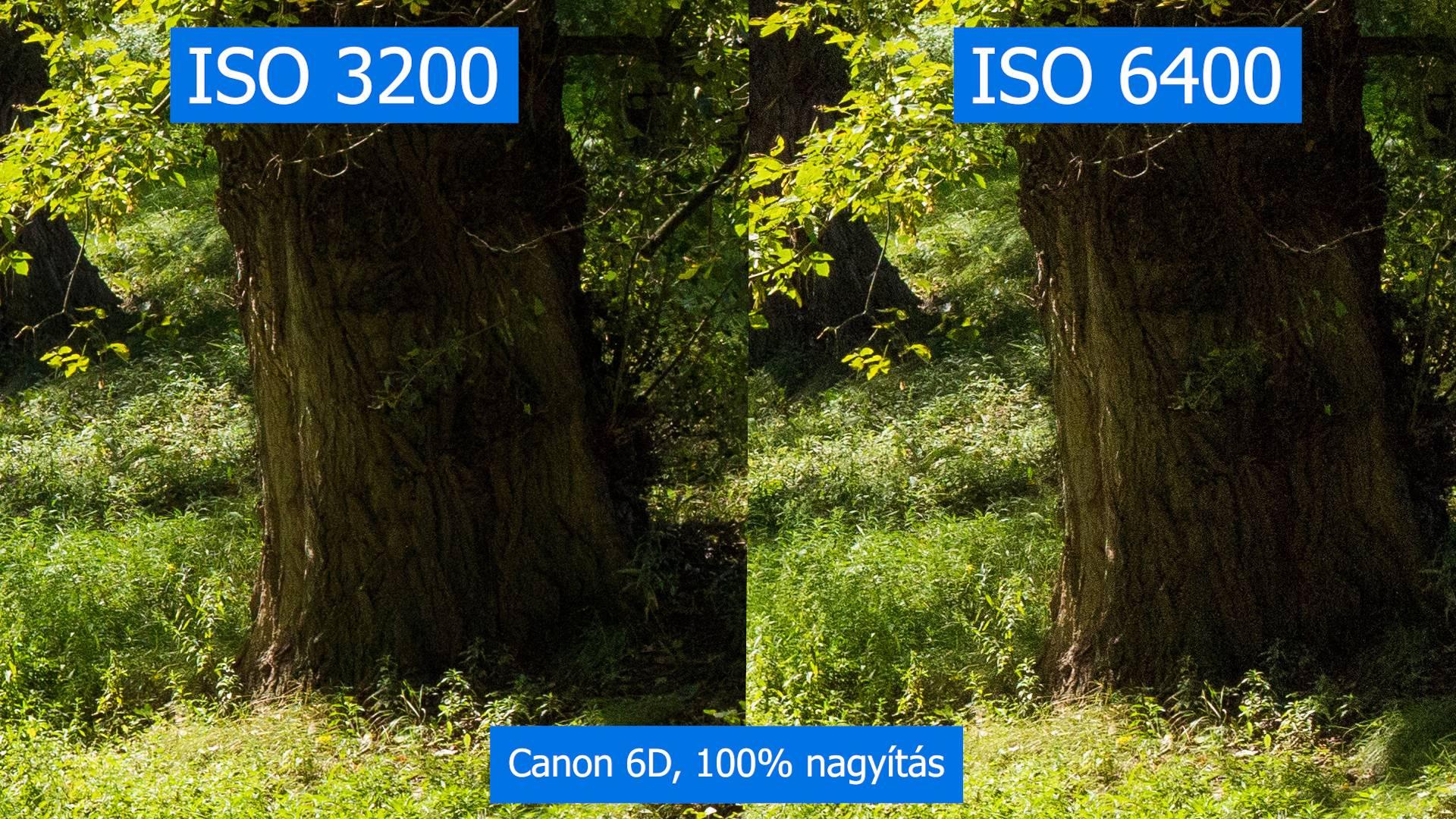 canon 6d iso 3200 vs iso 6400