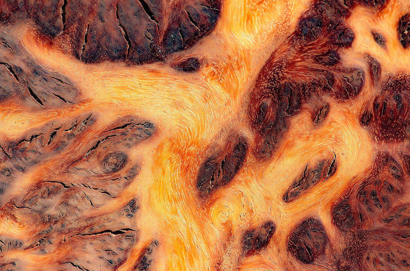 Daróczi Csaba: Drónnal a Marson képe