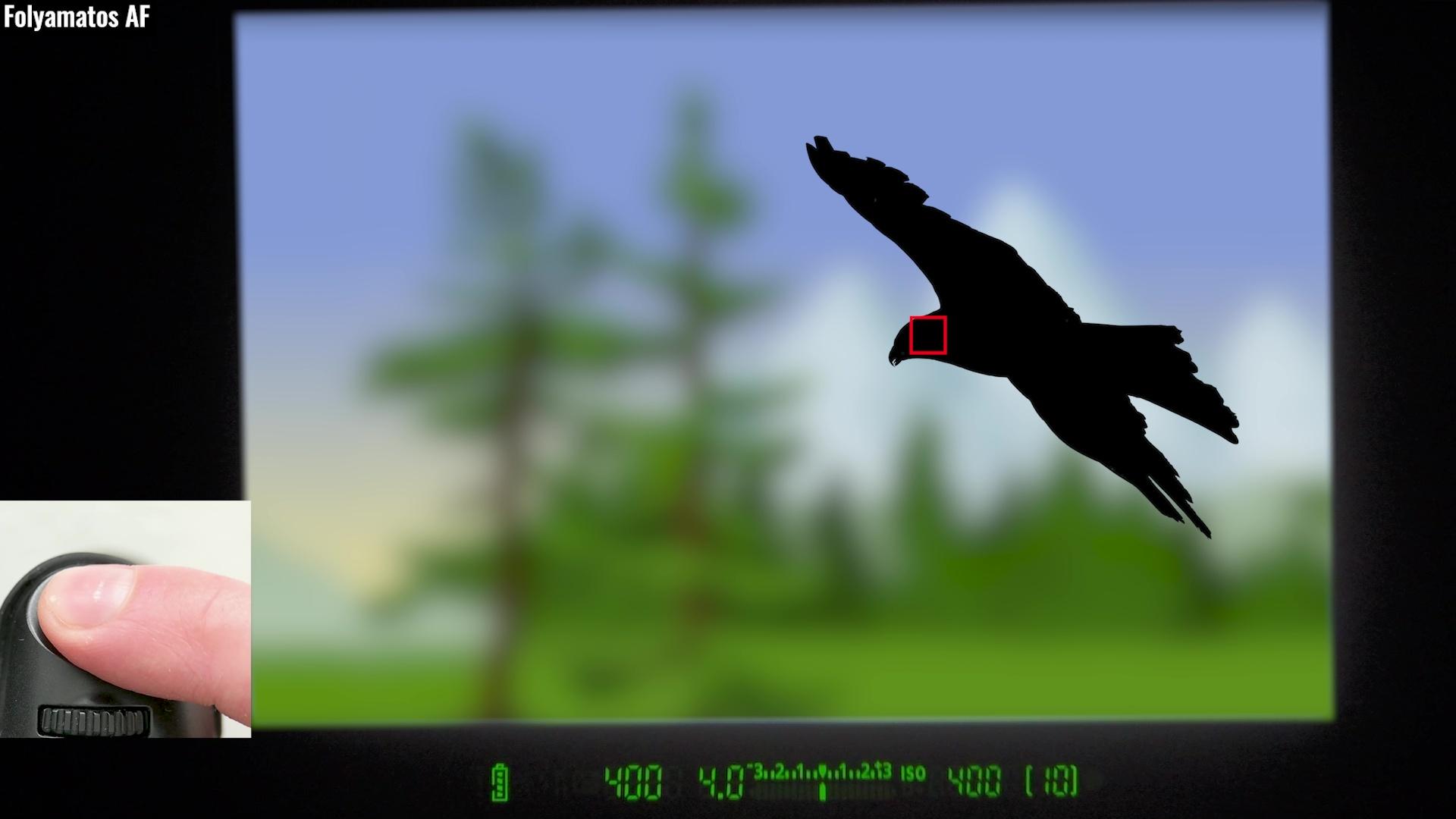 folyamatos követő autofókusz madárfotózás